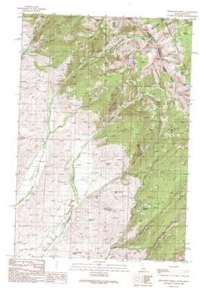 Bohannon Spring topo map