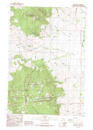 Tash Peak topo map