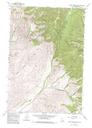 Badger Spring Gulch topo map