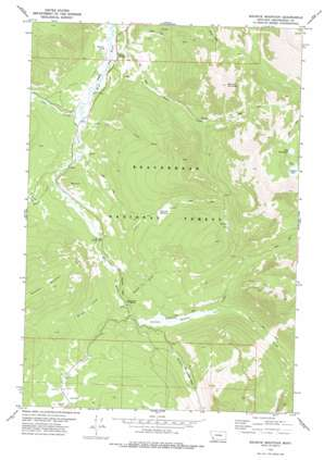 Maurice Mountain USGS topographic map 45113e1