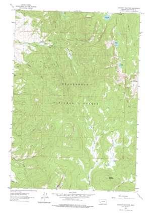 Stewart Mountain topo map