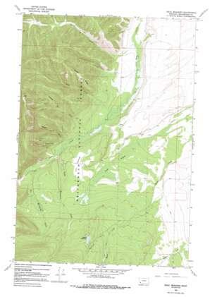 Isaac Meadows topo map