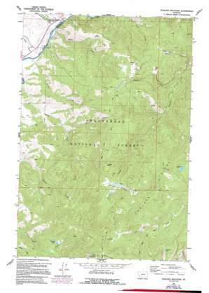 Foolhen Mountain topo map