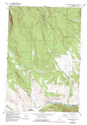 Lower Seymour Lake topo map