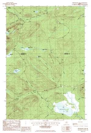 Mooseleuk Lake topo map