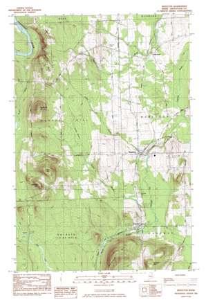 Mapleton topo map