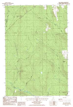 Bull Brook topo map