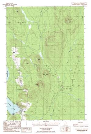 Portage Lake East topo map