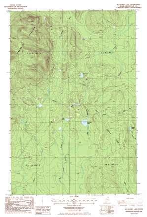 Mcclusky Lake topo map