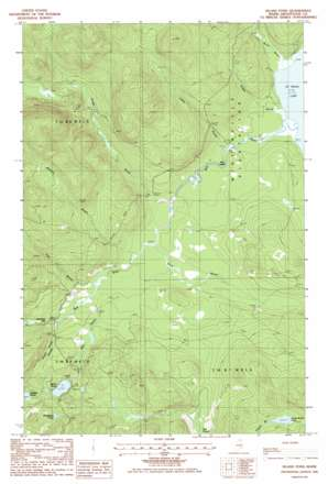 Island Pond topo map