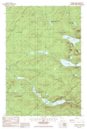 Gardner Pond topo map