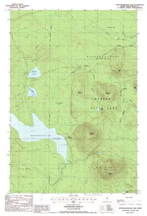 Chamberlain Lake USGS topographic map 46069a1