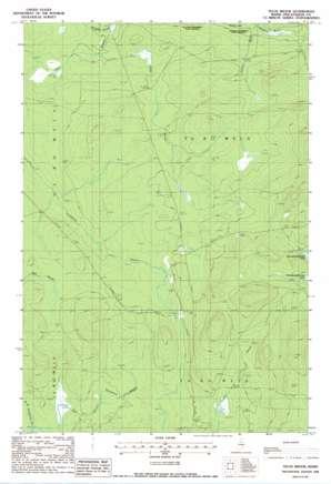 Telos Brook topo map