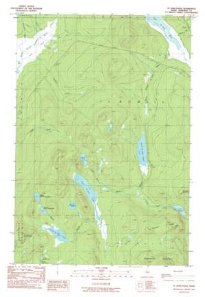 Saint John Ponds topo map