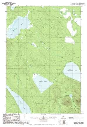Longley Pond topo map