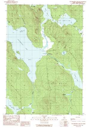 Caucomgomoc Lake East topo map