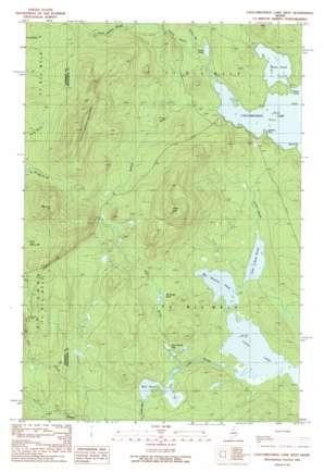 Caucomgomoc Lake West topo map