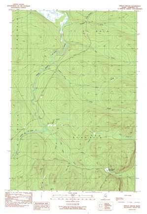 Spruce Brook topo map