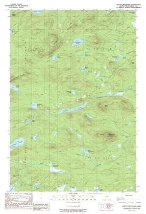 Beetle Mountain topo map