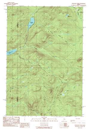 Wadleigh Pond USGS topographic map 46069c6