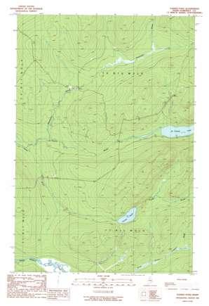 Turner Pond topo map