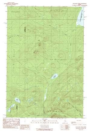 Allagash Pond USGS topographic map 46069d6