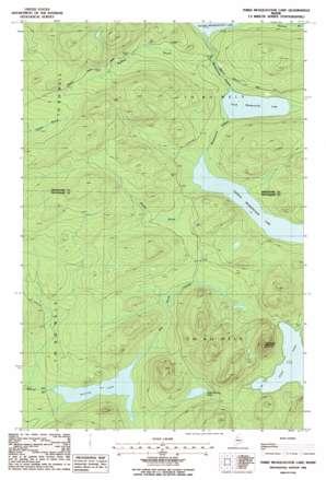 Third Musquacook Lake USGS topographic map 46069e2