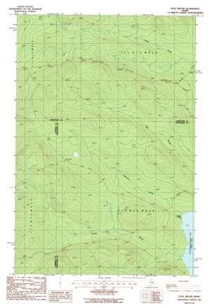 Fool Brook topo map