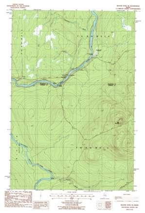 Beaver Pond Se topo map