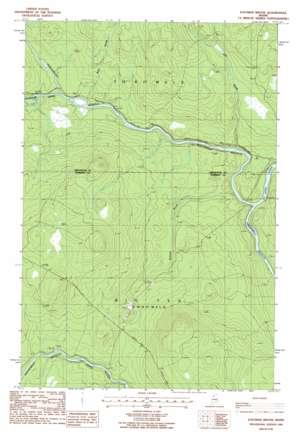 Eastman Brook topo map