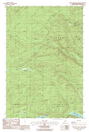 Upper Mcnally Pond topo map