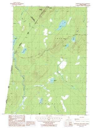 Burntland Pond USGS topographic map 46069f8