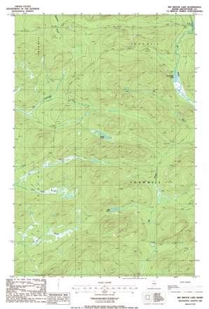 Big Brook Lake USGS topographic map 46069g1