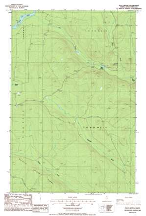 Blue Brook USGS topographic map 46069g4