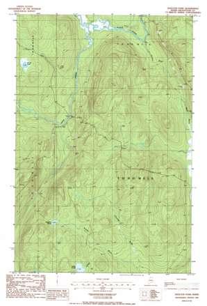 Houlton Pond topo map