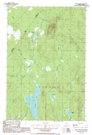 Depot Lake topo map