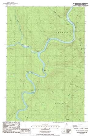 Big Black Rapids topo map