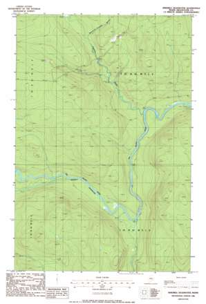 Ninemile Deadwater topo map