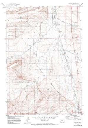 Buffalo topo map