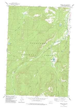 Moose Lake topo map
