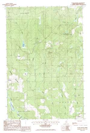 Picard Brook USGS topographic map 47068a1