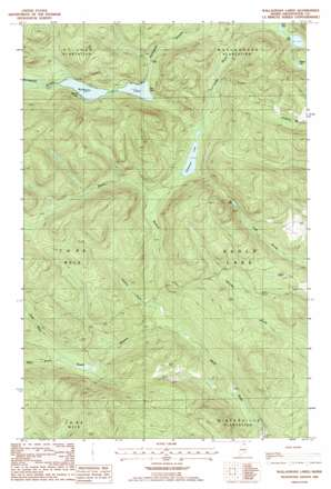 Wallagrass Lakes USGS topographic map 47068a6