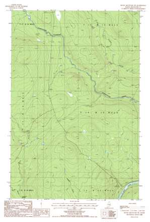 Rocky Mountain Sw USGS topographic map 47069a4