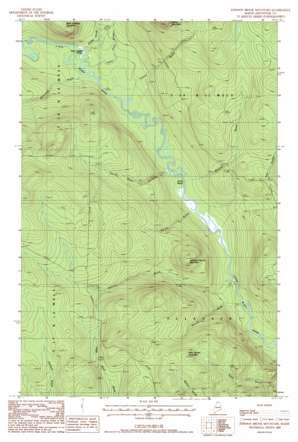 Johnson Brook Mountain topo map