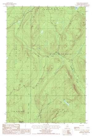 Hafey Pond topo map