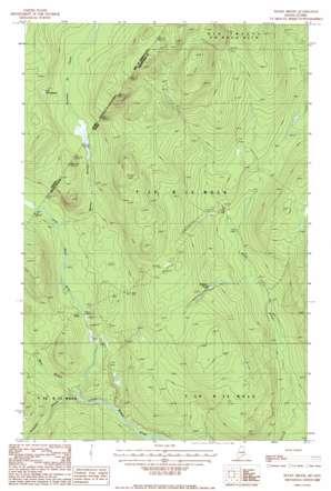 Rocky Brook topo map