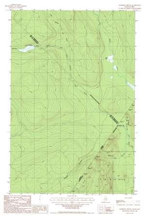 Morrison Brook topo map