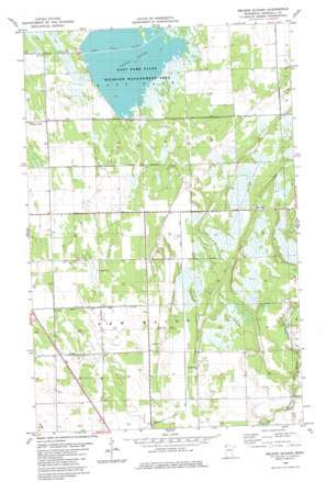 Nelson Slough USGS topographic map 48096d3