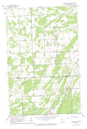 Hallock USGS topographic map 48096e1