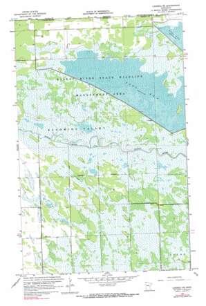 Caribou Ne topo map